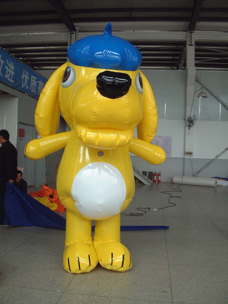 DSCF0004 10202   Leader of Carcapsule   Helikite Balloon   Balloon Light   Inflatable in China